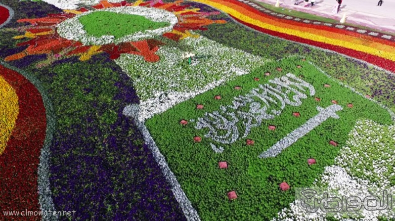 سجادة زهور ربيع الرياض