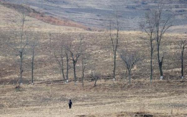 الجفاف-اطفال-كوريا-الشمالية