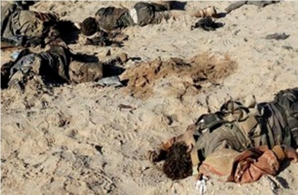 عقب مشاكل مالية.. #داعش يعرض بيع جثث مقاتلين أكراد - المواطن
