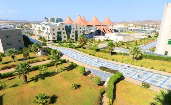 """طالبة بجامعة الملك خالد تُثقف الحوامل بأضرار """"الأعشاب"""" - المواطن"""