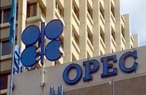 النفط اوبك اوبك
