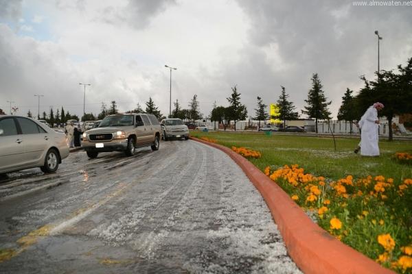 بالصور.. أجواء رائعة بعد تساقط الأمطار على متنزه السودة - المواطن