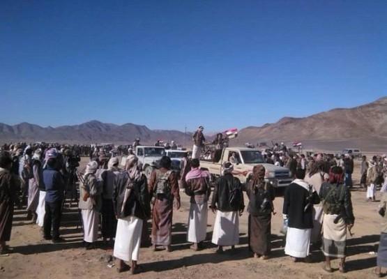 عملية نوعية تنتهي بضبط خلية إرهابية تعمل لصالح ميليشيا الحوثي في مأرب - المواطن