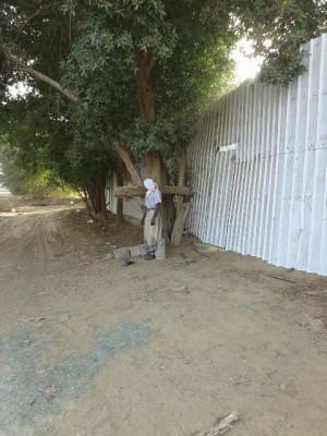 """انتحار """"يمني"""" في أحد مزارع صبيا - المواطن"""