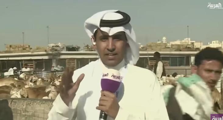 شاهد.. كم عدد خرفان الحج في مكة؟
