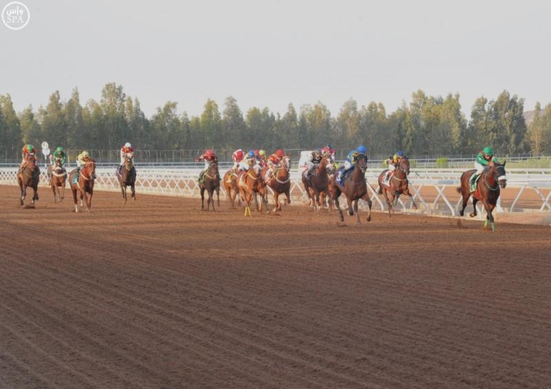 تحديد موعد انطلاق سباقات نادي الفروسية بموسم الرياض صحيفة المواطن الإلكترونية