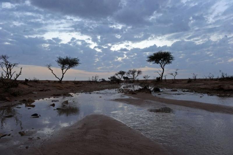 5 ساعات من الأمطار والغبار على القصيم - المواطن