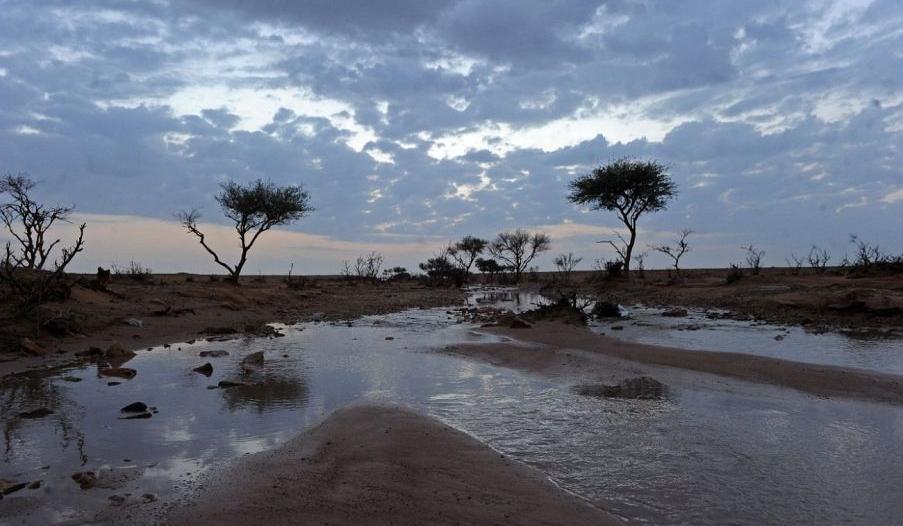 5 ساعات من الأمطار والغبار على القصيم