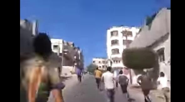 عجل هارب يثير الرعب في شوارع غزة - المواطن