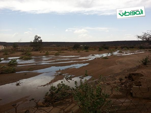 وادي العقيق بعد السيل: ماء وخضرة ونزهة