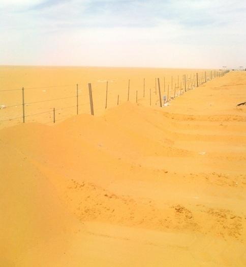السعودية  0 الصحراء طريق - الدمام الابل