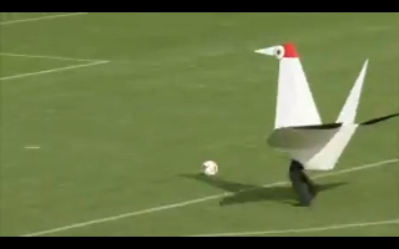 شاهد بالفيديو.. طائر يُسجل هدفًا غريبًا بهذه الطريقة
