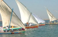 """رعاية الشباب تنظم سباق القوارب الشراعية في """"جازان"""" غداً"""