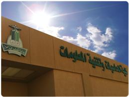 كلية الحاسبات وتقنية المعلومات بجامعة الملك عبدالعزيز (فرع رابغ)1