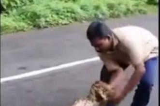 بالفيديو.. مزارع يخرج عنزتين من فم ثعبان حي بيديه - المواطن