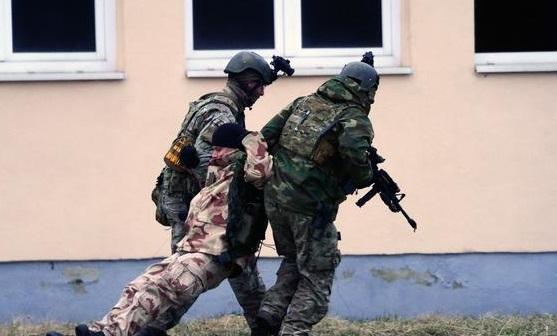 المجر-جنود