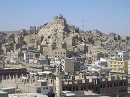 إجرام الحوثي في البيضاء.. ردم آبار وحرق محاصيل وقناصة لقتل المدنيين! - المواطن