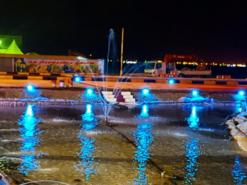 10 لجان لإنهاء تجهيزات مهرجان شاطئ الإبداع بالحريضة 10