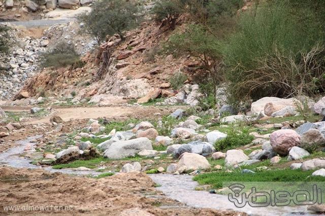 جبال الشفا بمحافظة الطائف10