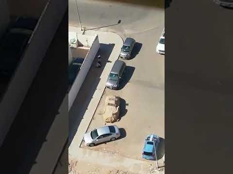 بالفيديو.. عصابة تهشم زجاج السيارات وتسرق محتوياتها بمكة المكرمة
