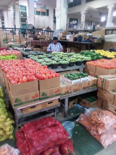 %50 ارتفاعاً في سعر الطماطم و150% في الخيار بالطائف - المواطن