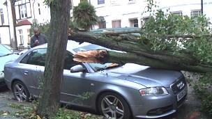 131028123322_storm_damage_304x171_bbc_nocredit
