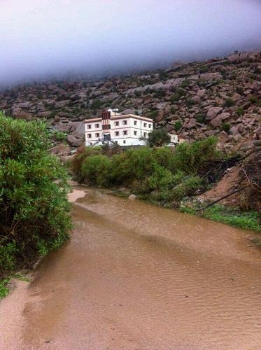 الضباب والأمطار تجذب أهالي ميسان للاستمتاع بالأجواء - المواطن