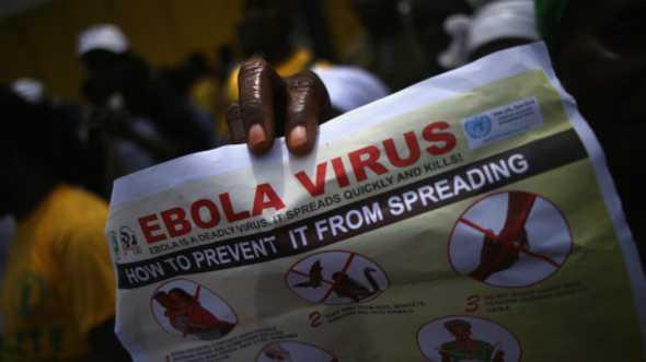 """""""إيبولا"""" يحرم المغرب من تنظيم أمم إفريقيا 2015 - المواطن"""