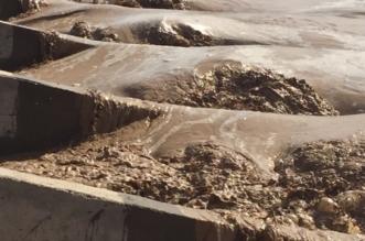 مدني تبوك ينقذ باصًا علق في وادي حاكة بسبب السيول - المواطن