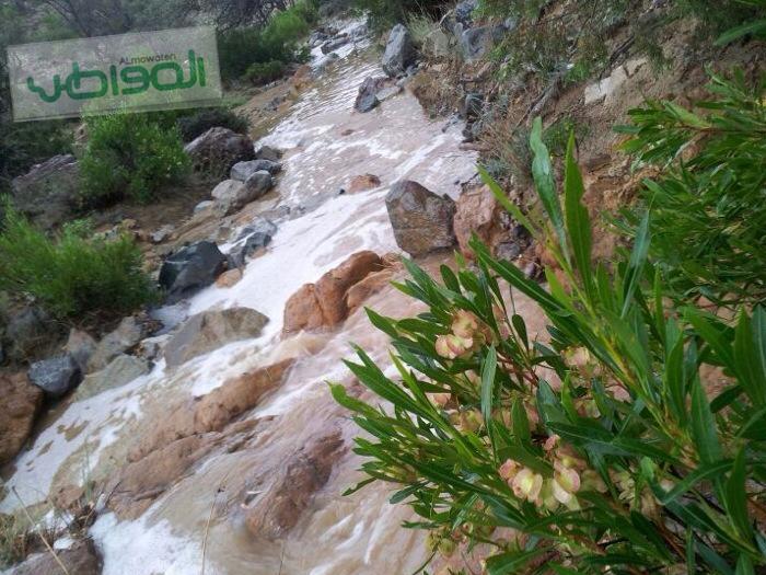 مواطن يوثق بالصور سيول وأمطار النماص - المواطن
