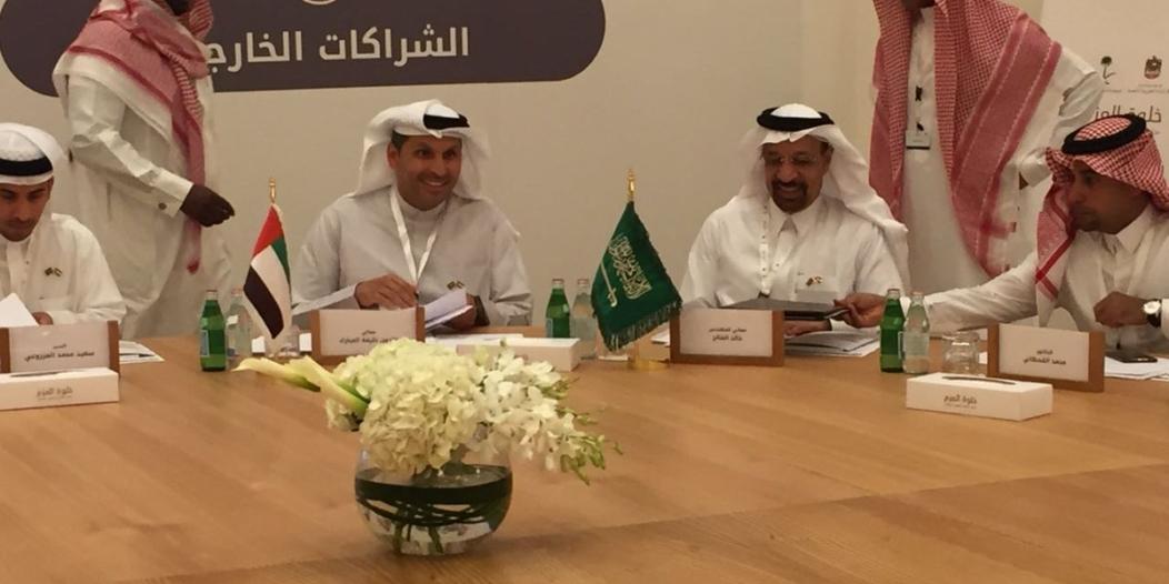 بالصور.. انطلاق جلسات خلوة العزم بين المملكة والإمارات بمشاركة 150 مسؤولاً
