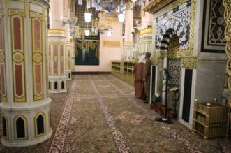 تجديد سجاد الروضة الشريفة بالمسجد النبوي بآخر وطني فاخر - المواطن