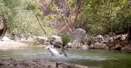 3 سباحين حاولوا التقاط سيلفي في بركة عميقة فغرقوا