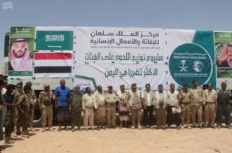 مركز الملك سلمان للإغاثة يوزع 9000 كرتون من اللحوم في شبوة - المواطن