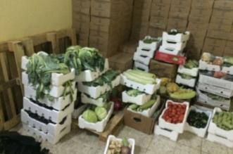 مصادرة 250 كيلو من الأطعمة الفاسدة في تبوك - المواطن