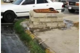 مواطن يوثق بالفيديو.. تدفق مياه الصرف أمام سوق السمك بخميس مشيط - المواطن
