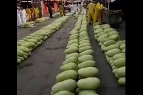 شاهد.. 3 ثمرات بطيخ بريال واحد في سوق جدة!