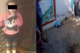 الطفلة مريم خطفها مختل من والدتها ليذبحها من الوريد للوريد في شارع عام! - المواطن