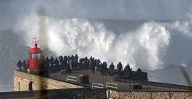شاهد.. خمسيني يركب موجة ضخمة للغاية!