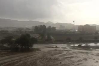 بالفيديو والصور.. أمطار الحرجة تغري الأهالي بالإفطار خارج منازلهم - المواطن