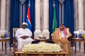 قصر الصفا يحتضن قمة الملك سلمان ورئيس جامبيا - المواطن