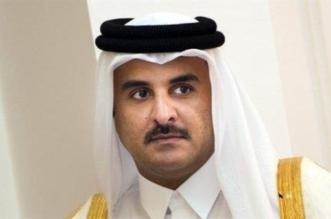 قناة سلوى صفعة جديدة لتنظيم الحمدين - المواطن