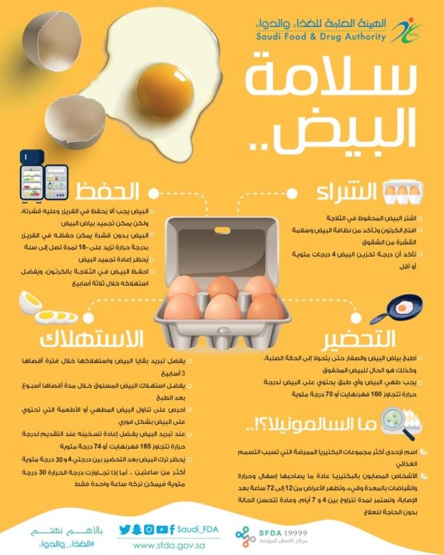 لسلامتك.. نصائح لتخزين البيض وطريقة استهلاكه بشكل آمن - المواطن