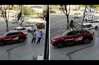 بالفيديو.. نجاة عامل محظوظ سقط من أعلى سقالة فوق سيارة - المواطن