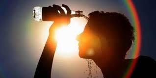 الصحة ترفع جاهزيتها للتعامل مع حالات الإجهاد الحراري وضربات الشمس - المواطن