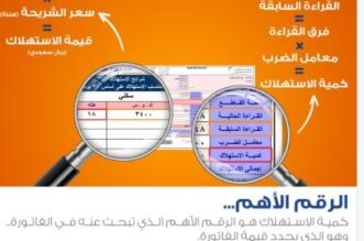 بالفيديو.. كيف تقرأ الرقم الأهم في فاتورة الكهرباء - المواطن