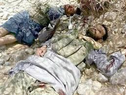 مقتل وإصابة 659 عنصراً من ميليشيا الحوثي في معارك بتعز خلال شهرين - المواطن