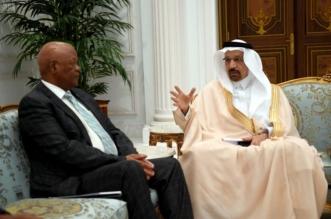 الفالح يبحث مع وزير الطاقة بجنوب إفريقيا آفاق الاستثمار - المواطن