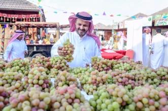 بالصور.. مزارعو العنب بالقصيم يترقبون انطلاق المهرجان لتسويق 200 ألف طن - المواطن