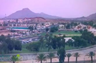 بالفيديو.. خميس مشيط طموح وإنجاز - المواطن